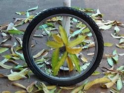 Cykelhjul är kvar efter stöld